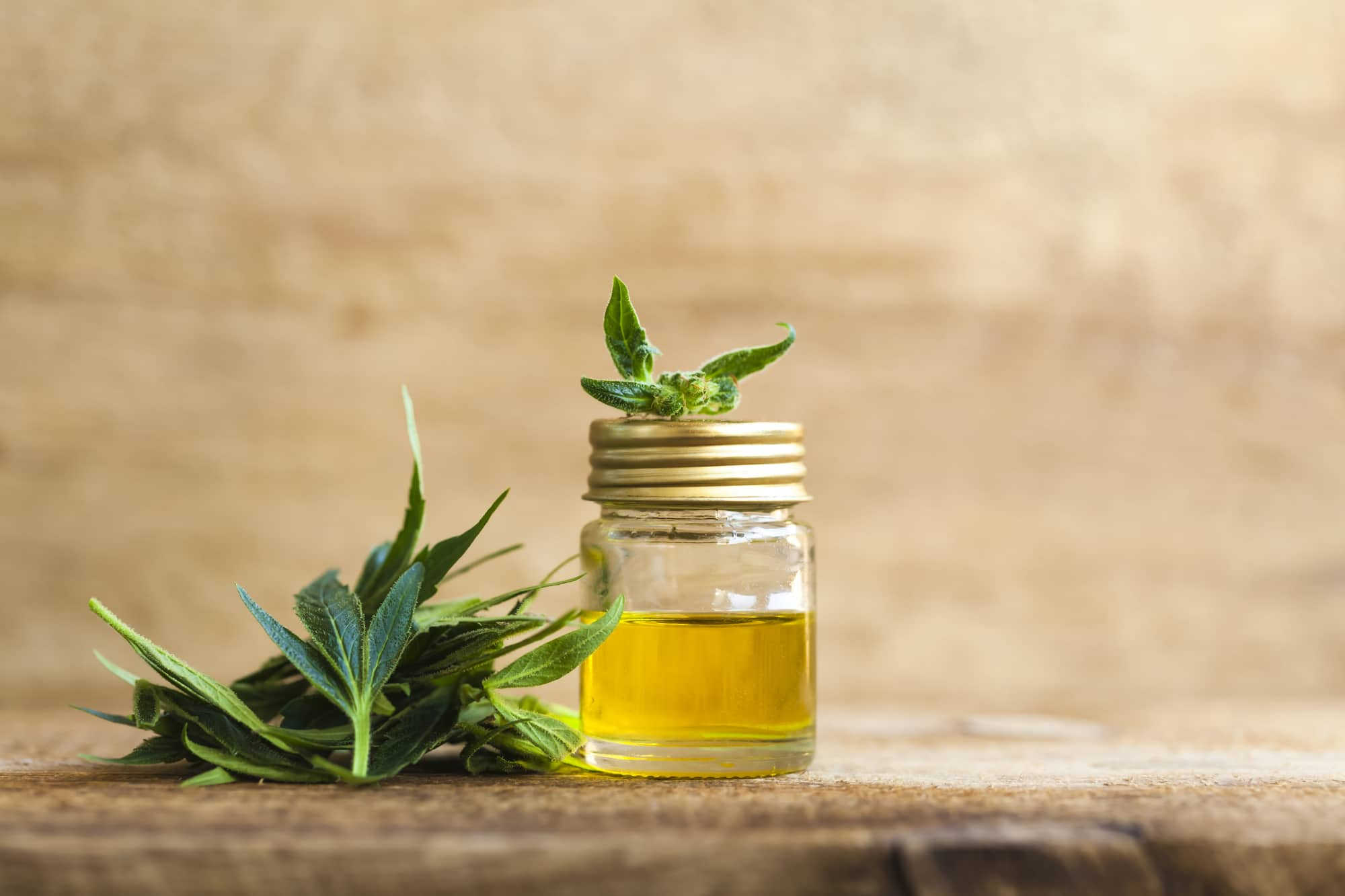 which cbd products choose