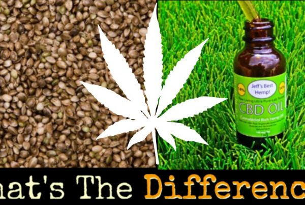 difference cbd oil hemp thc